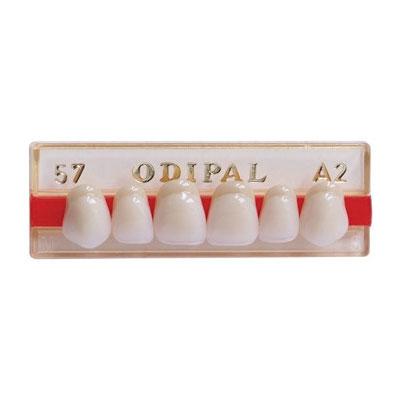 ODIPAL