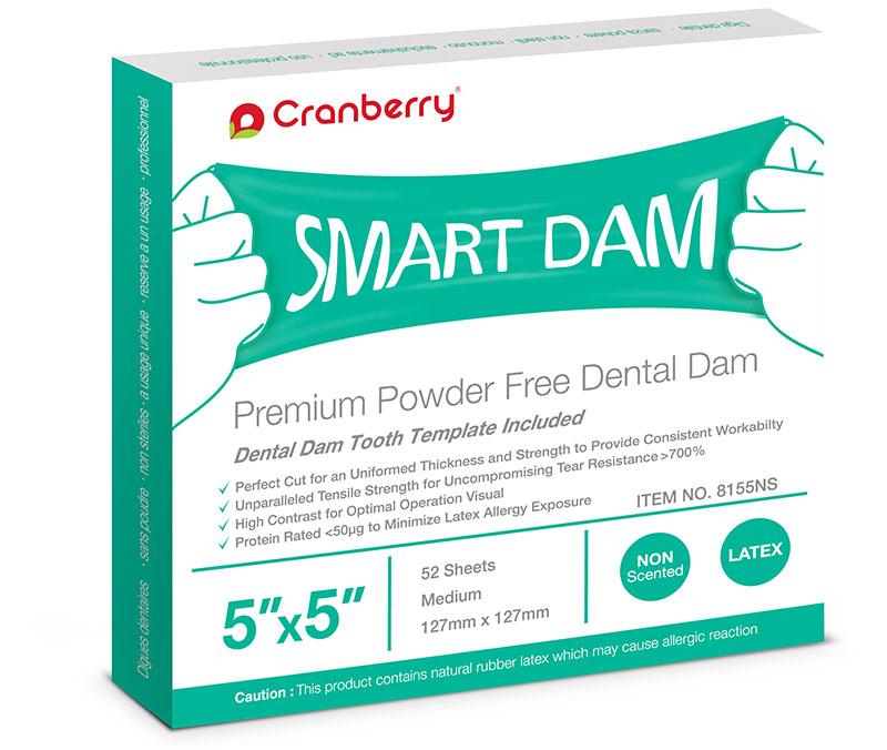 Smart Dam - 5