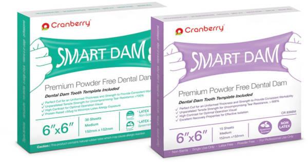 Smart Dam