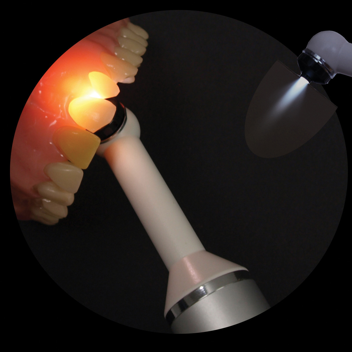 FUSION Transilluminator