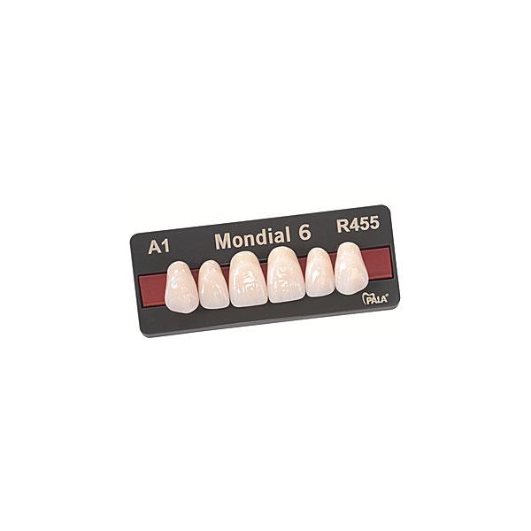 Mondial i and Mondial Denture Teeth