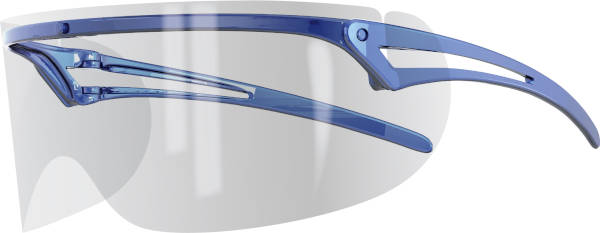 Googles Professional Eyeshields