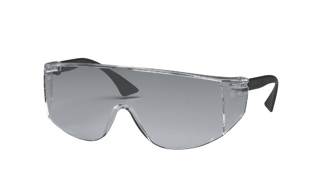 ASEPT-ALL Safety Glasses